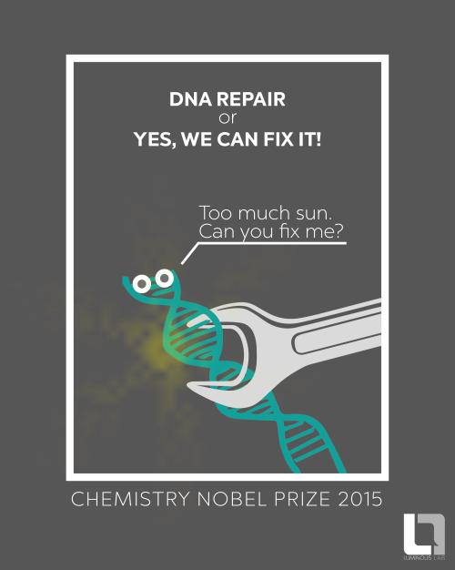 nobel prizes chemistry laureates
