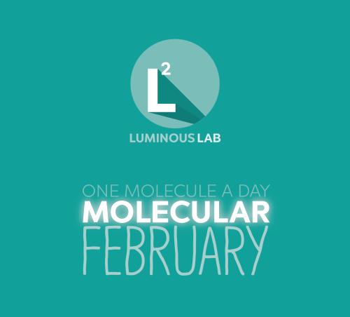 molecularfebruary